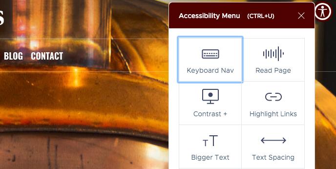 UserWay widget